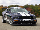 Images of Mustang FR500 GT 2006