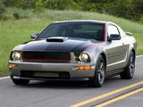 Images of Mustang AV8R 2008