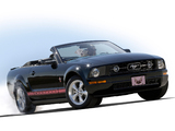 Images of Mustang Convertible Warriors in Pink 2008