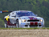 Images of Mustang GT3 2010