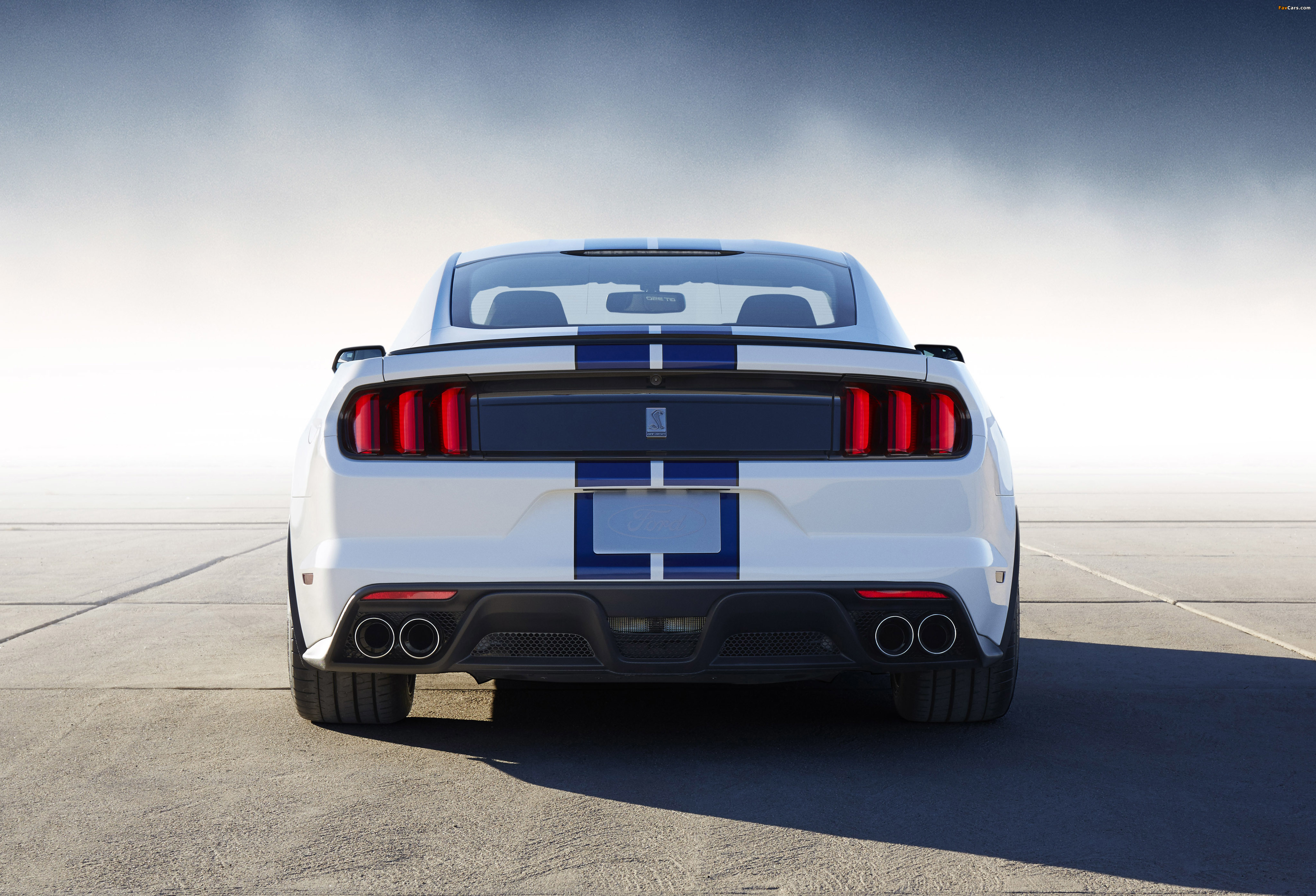 Images of Shelby GT350 Mustang 2015 (4096 x 2789)