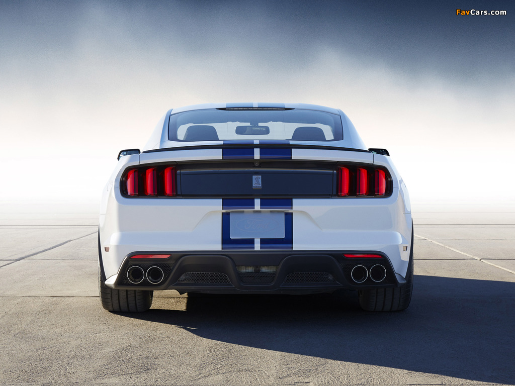 Images of Shelby GT350 Mustang 2015 (1024 x 768)