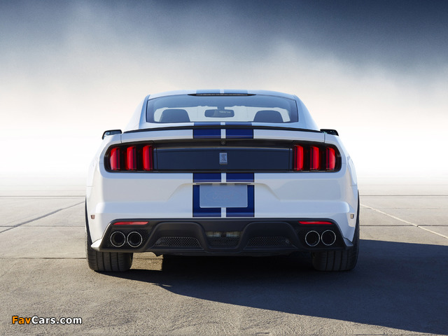 Images of Shelby GT350 Mustang 2015 (640 x 480)