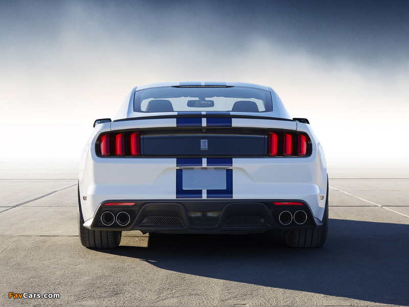 Images of Shelby GT350 Mustang 2015 (800 x 600)