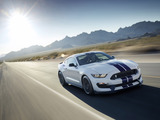 Images of Shelby GT350 Mustang 2015