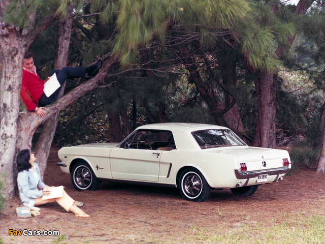 Photos of Mustang Coupe 1965 (640 x 480)