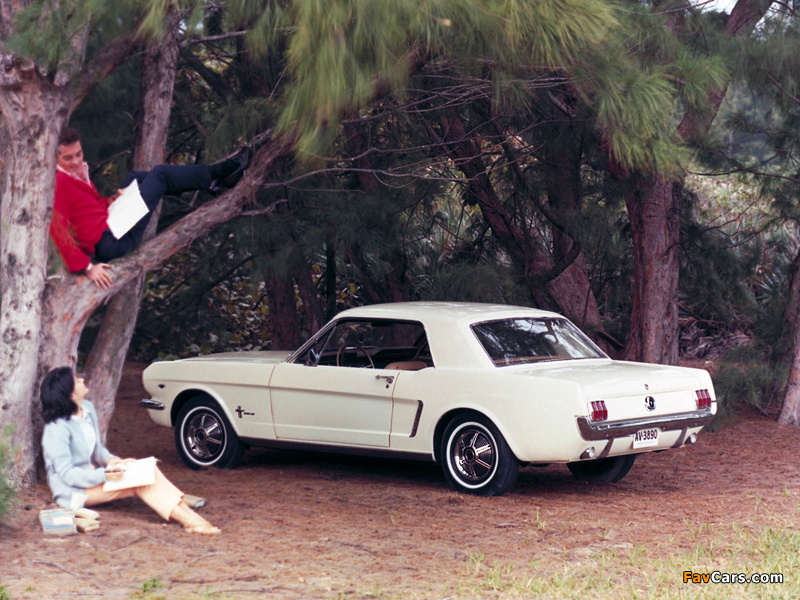 Photos of Mustang Coupe 1965 (800 x 600)