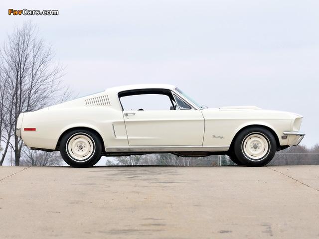 Photos of Mustang Lightweight 428/335 HP Tasca Car 1967 (640 x 480)