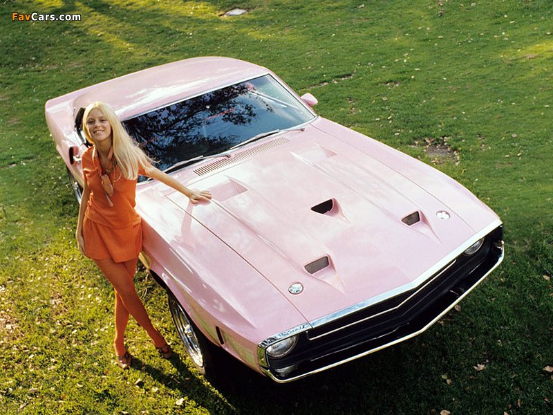 Photos of Shelby GT500 Playmate Pink 1969 (800 x 600)