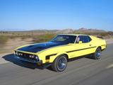 Photos of Mustang Boss 351 1971