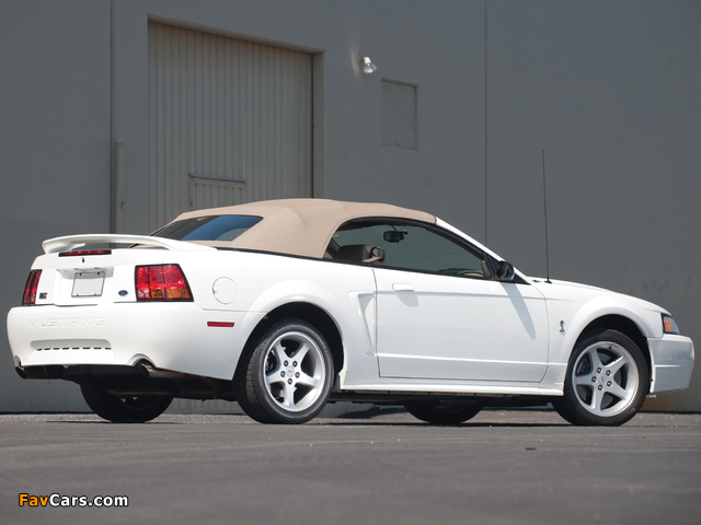 Photos of Mustang SVT Cobra Convertible 1999–2002 (640 x 480)