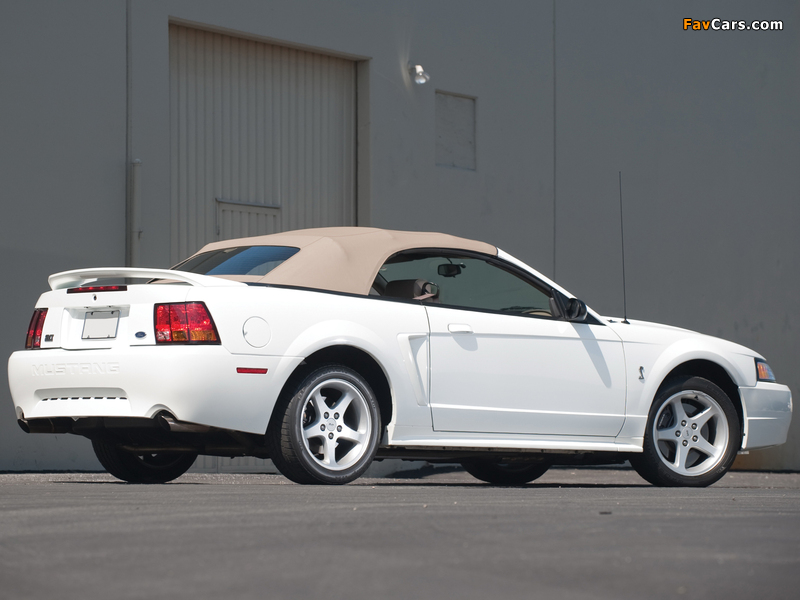 Photos of Mustang SVT Cobra Convertible 1999–2002 (800 x 600)