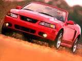 Photos of Mustang SVT Cobra Convertible 2004–05
