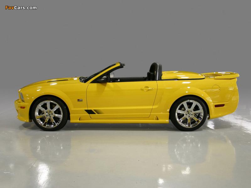 Photos of Saleen S281 Speedster 2006–08 (800 x 600)