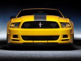 Photos of Mustang Boss 302 2012