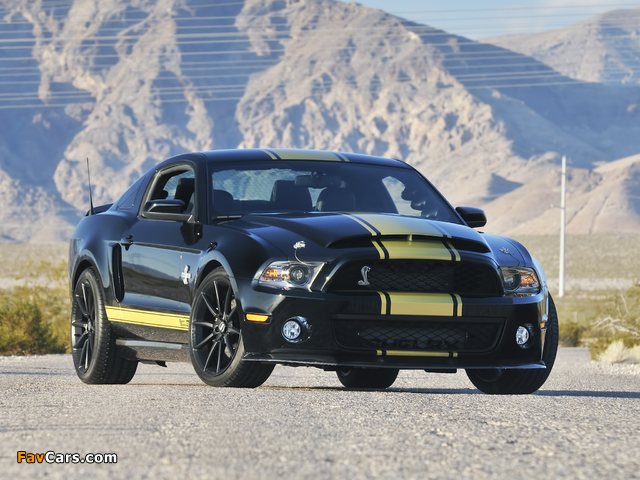 Photos of Shelby GT500 Super Snake 50th Anniversary 2012 (640 x 480)