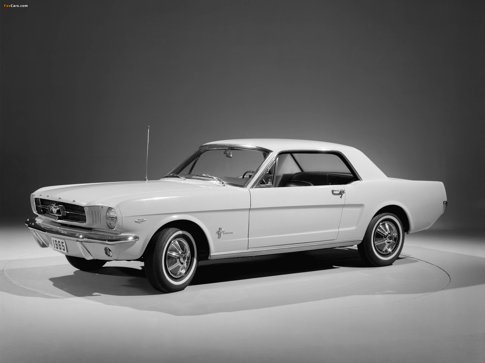 Pictures of Mustang Coupe 1965 (2048 x 1536)
