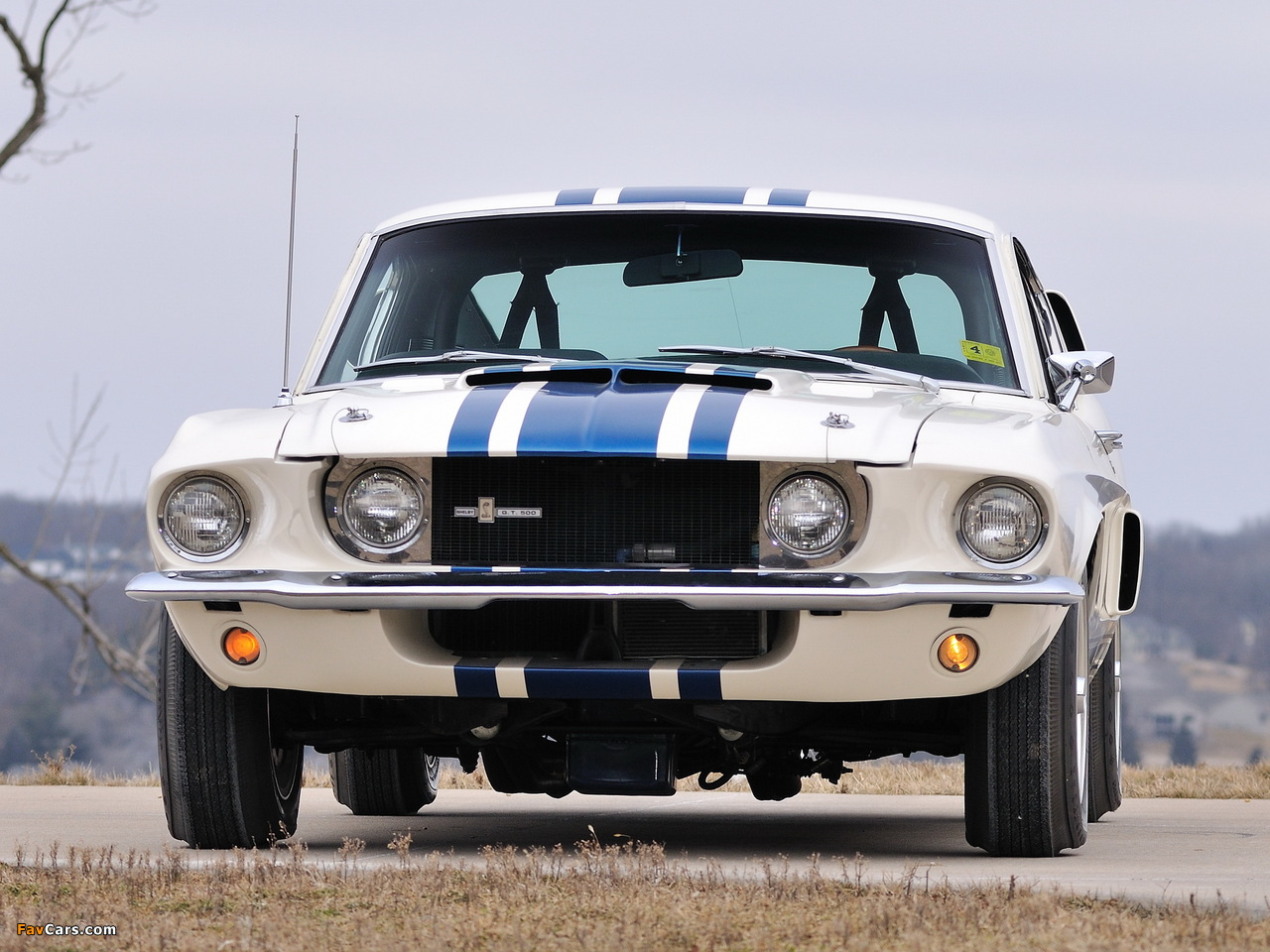 Pictures of Shelby GT500 Super Snake 1967 (1280 x 960)