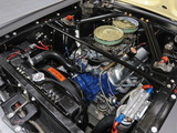 Pictures of Mustang Coupe Race Car (65B) 1967