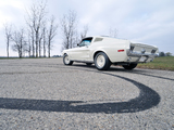 Pictures of Ford Mustang Lightweight 428/335 HP Tasca Car 1968