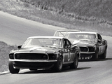 Pictures of Mustang Boss 302 Trans-Am Race Car 1969