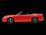 Pictures of Mustang SVT Cobra Convertible 2003–04