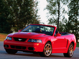 Pictures of Mustang SVT Cobra Convertible 2004–05