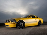 Pictures of Parotech Cesam Mustang 2007