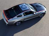 Pictures of Mustang AV8R 2008