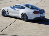 Pictures of Shelby GT350 Mustang 2015