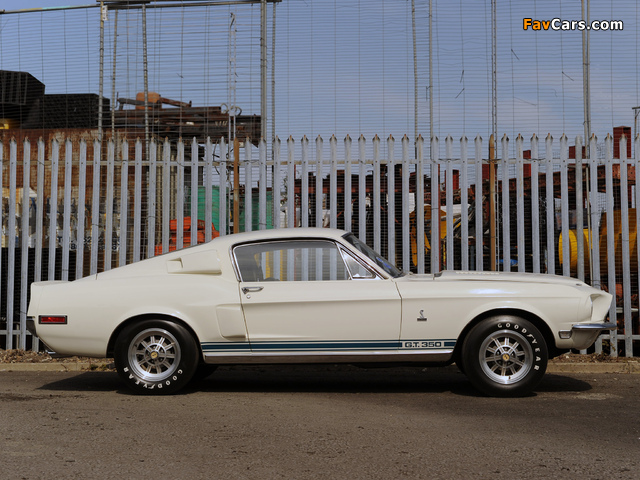 Shelby GT350 1968 wallpapers (640 x 480)