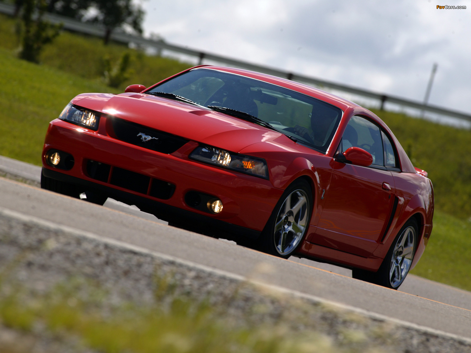 Mustang Svt Cobra Coupe 2004 05 Wallpapers 1600x1200
