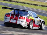 Mustang GT3 2010 wallpapers