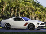 Roush Stage 3 2013 wallpapers