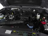 Ford Ranger XL 2WD Regular Cab 6-foot Box 2008–11 images