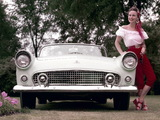 Photos of Ford Thunderbird 1956