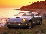 Pictures of Ford Thunderbird 2002–05