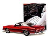 Images of Ford Gran Torino Sport Coupe 1975