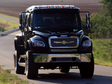 Photos of STRUT Freightliner Business Class M2 Sportchassis Grille Collection 2004