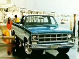GMC C3500 Regular Cab Pickup 1973 images