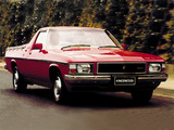 Pictures of Holden Kingswood Ute (WB) 1980–84