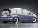 Photos of Honda Fit TJIN Edition Concept (GE) 2008