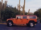 Hummer H1 Wagon 10th Anniversary Edition 2002 pictures