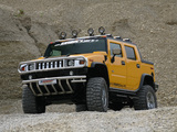 Images of Geiger Hummer H2 Hannibal 2006–09
