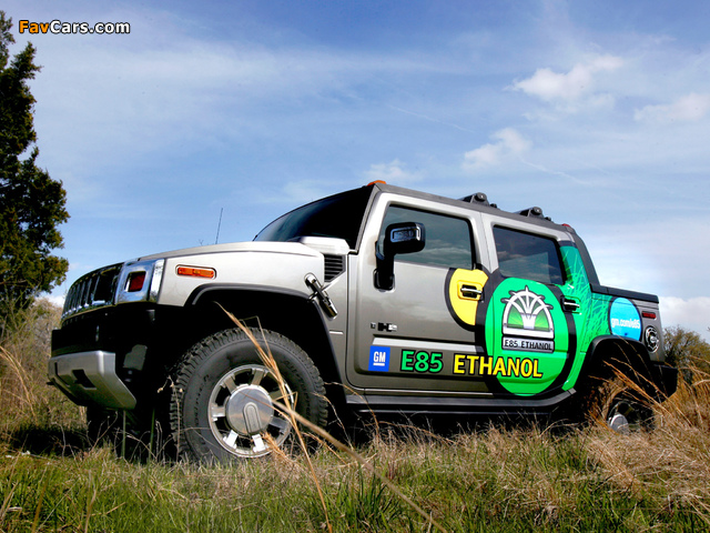 Images of Hummer H2 SUT E85 2009 (640 x 480)