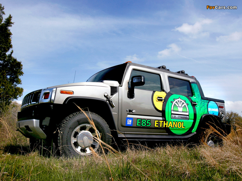 Images of Hummer H2 SUT E85 2009 (800 x 600)