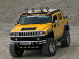 Photos of Geiger Hummer H2 Hannibal 2006–09