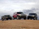 Hummer photos