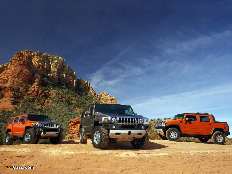 Hummer pictures (800 x 600)