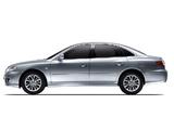 Hyundai Grandeur (TG) 2009–11 pictures